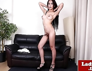 Classy ladyboy teases and tugs personally
