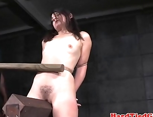 BDSM sub whipped with tremendous stick by maledom
